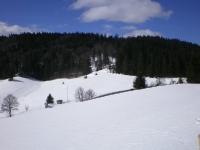 schwarzwald1.jpg