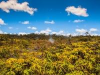 Hawaii_Volcano (11 of 56)